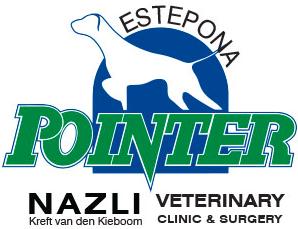 Pointer Nazli Clinic