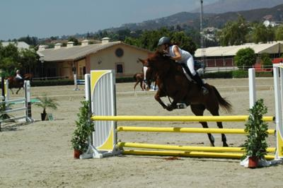 Show jumping competition 2010