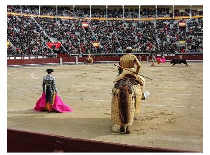 Арена для боя быков. Испания