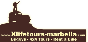 X Life Tours Marbella