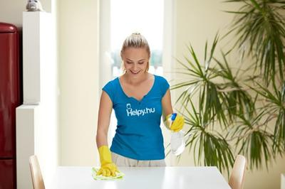 AVAILABLE: Experienced Multilingual Housekeeper