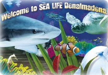 Sea Life - Benalmadena