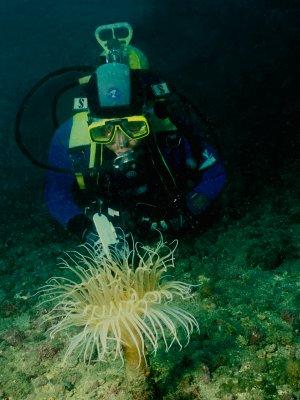 Marbella diving school