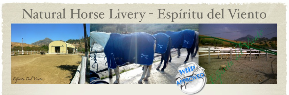 marbella horse livery spain