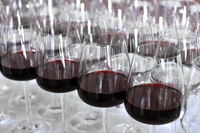 Wine Tasting Marbella