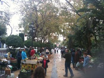 Ecological market at Paseo de la Alameda