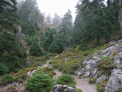 Nature walks in Andalusia