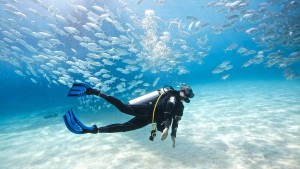 Diving in Marbella and the Costa del Sol