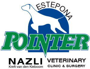 Pointer Nazli Clinic