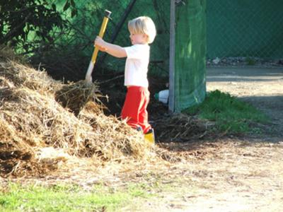There is something about a muck heap that the young pony clubers seem to find irresistible