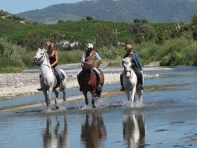 Riding through the river