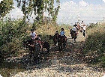 Estepona equestrian school