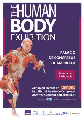 The Human Body Exhibition Marbella