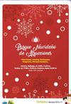 Estepona Christmas Events Programme