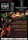 Larachi Flamenco festival Malaga