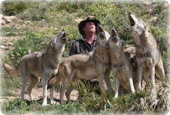 Lobo park Antequera