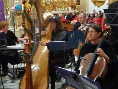 Charlotte Nyborg the Solo Harpist