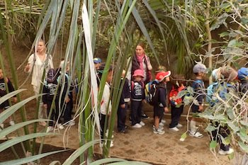 Calpe students exploring Bioparc