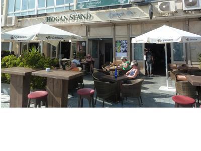 hogan Stand's terrace