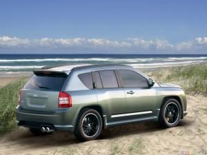 Long term car rental company