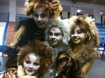 Danzart Cats
