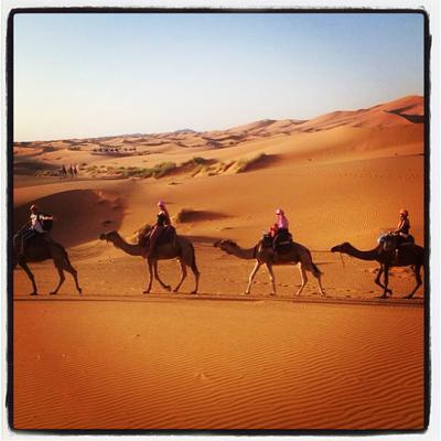 Marrakech Camel treks trip