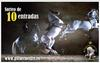 Andalusian Horse Show
