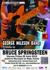 Bruce Springsteen Tribute Concert in Mijas - June 26, 2015