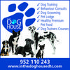 Everything Dog!
